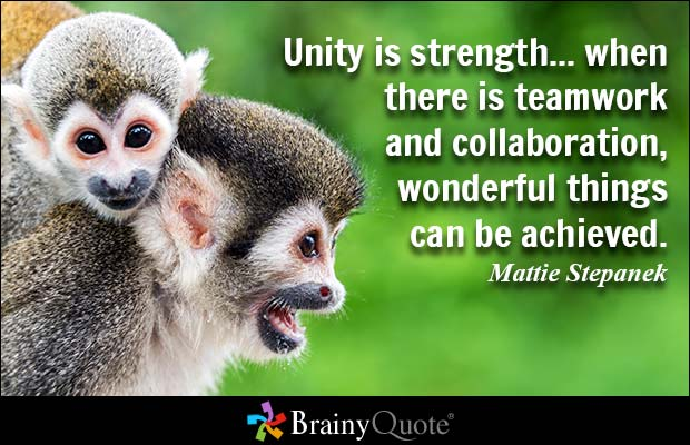 Quote by Mattie Stepanek: Unity is strength... when there is teamwork and collaboration, wonderful things can be achieved.